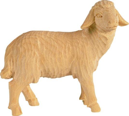 Schaf rechts schauend Nr. 4451