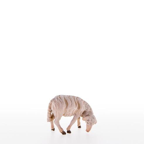 Schaf fressend Nr. 21101