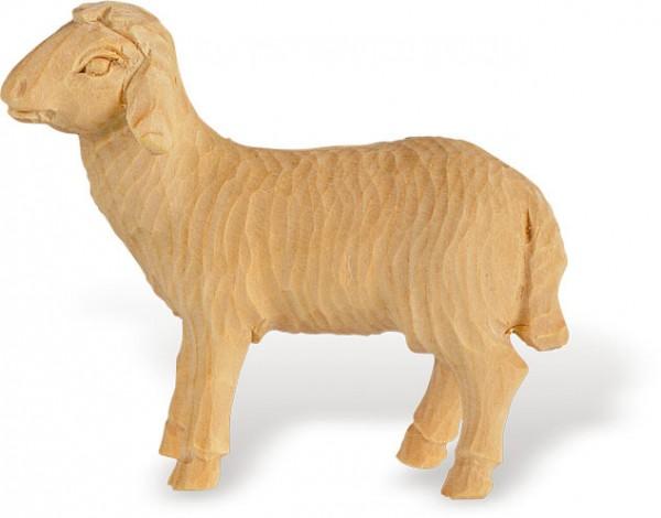 Schaf stehend Nr. 4255