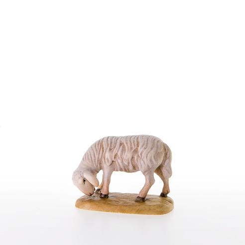 Abweidendes Schaf Nr. 21201
