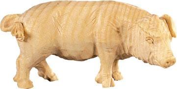 Schwein Nr. 4488