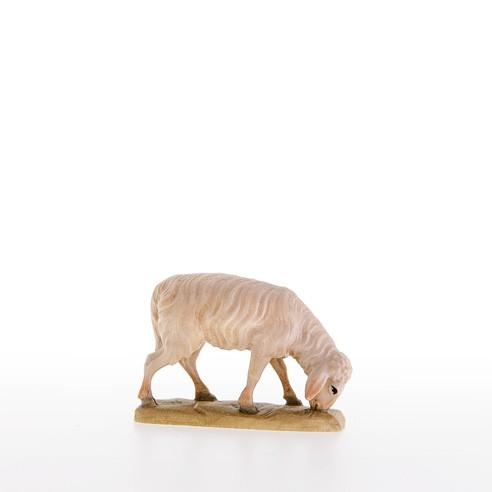 Abweidendes Schaf Nr. 21001